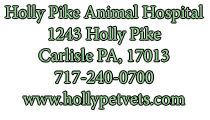 Holly Pike Animal Hospital