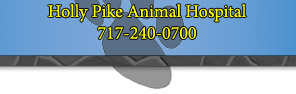 Holly Pike Animal Hospital Home Page